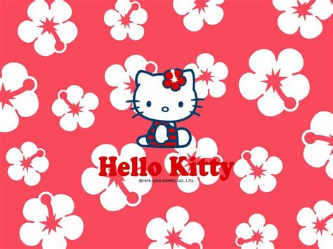wallpaper ruangan hello kitty hello kitty pictures for backgrounds wallpaper cave