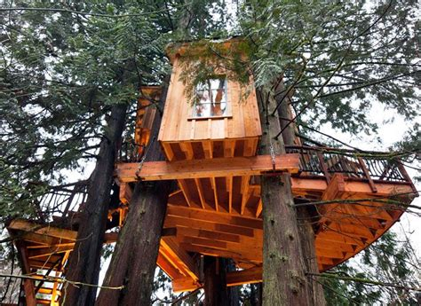 tree house master treehouse masters treehouse tree houses pinterest