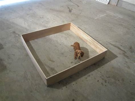 potty area crate with potty area puppy