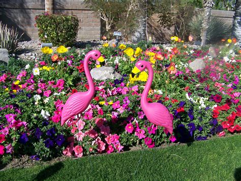 pink flamingos in the front yard 12 pink flamingo cake ideas and designs
