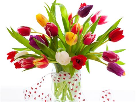 ship flowers flower delivery in bangalore winni