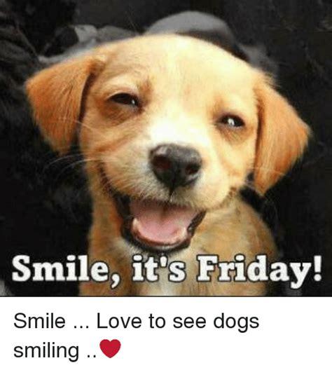 Smile Dog Meme - smile dog meme 28 images smile dog memes image memes