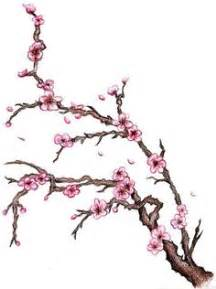 1000 images about cherry blossom tree tattoo ideas on