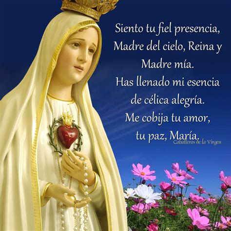 imagenes de la virgen maria para whats 17 best images about virgen de f 225 tima im 225 genes on