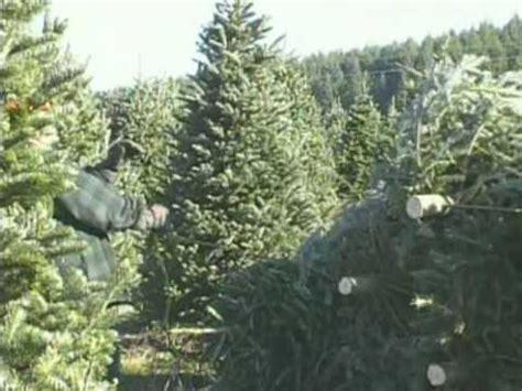 tree helicopter vyhled 225 v 225 n 237 beatzone cz