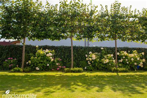 Garten Pflanzen Bestellen 647 by Familiengarten Gartendesigns Niedermaier G 228 Rten