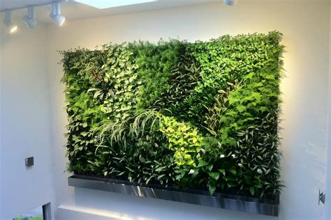 Diy Kitchen Remodel Ideas by Living Wall Ideas Hgtv