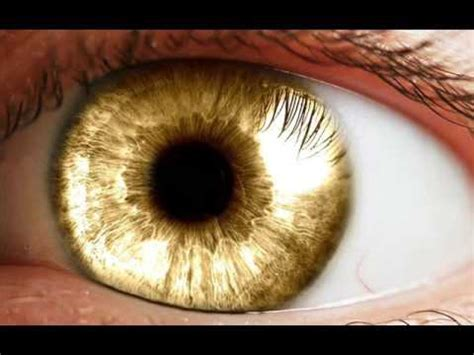 gold eye color extremely powerful biokinesis 3 hour get golden