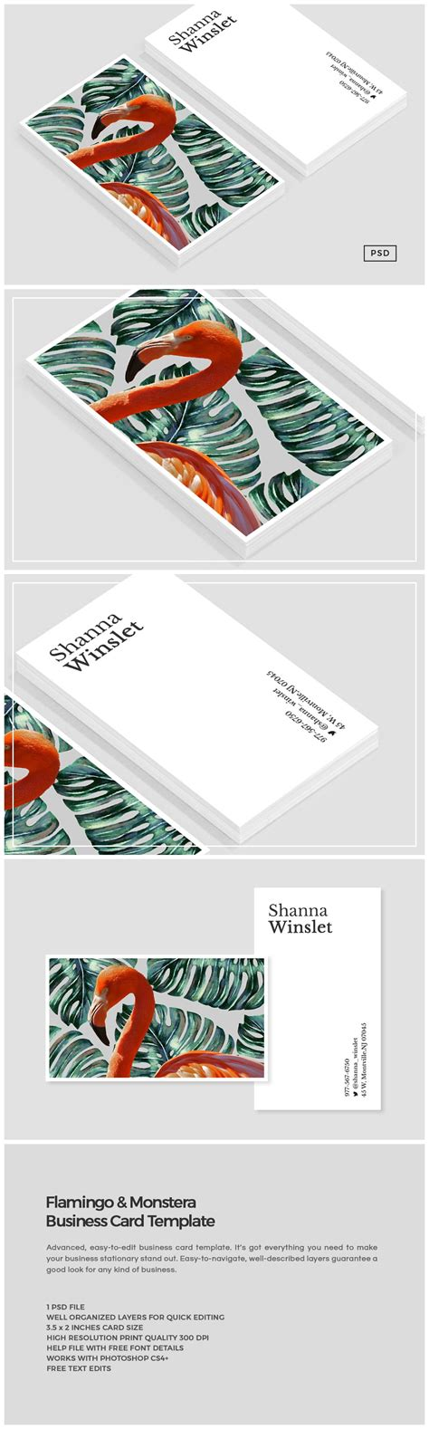 o card template flamingo monstera business card business card