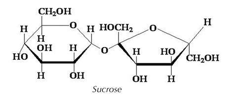 sucrose structural diagram solved hi guys could you help me in figuring this