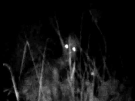 imagenes anormales reales alienigenas reales avistamientos extraterrestres real