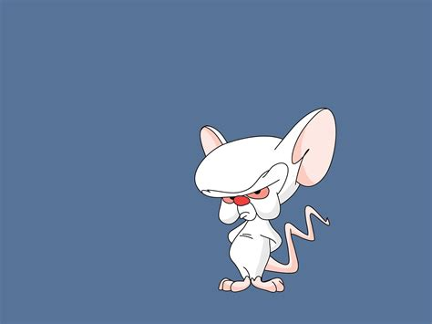 pinky wallpaper pinky and the brain wallpaper and background 1600x1200