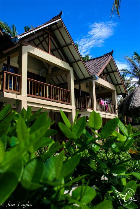dive center gili trawangan dive center for sale padi 5 idc dive centre hotel