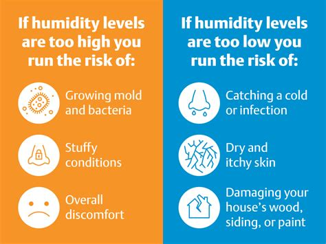 humidity at home what you need to this winter