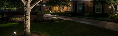 landscape lighting groundhog landscaping