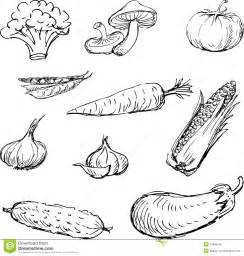 Draw On Pictures drawn vegetables stock photo image 24898750