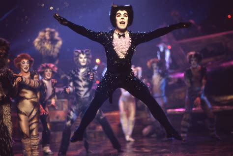 cats musical cats on screen cats the musical