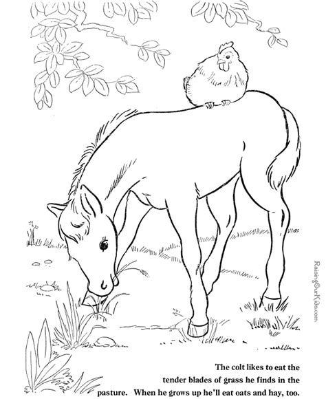 barn coloring pages with animals barn animals coloring pages coloring home