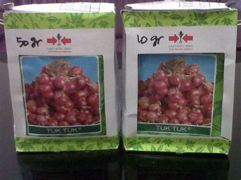 Bibit Bawang Merah budidaya bawang merah dengan biji sebagai solusi mahalnya