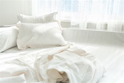 does renters insurance cover bed bugs are bed bugs covered by renters insurance