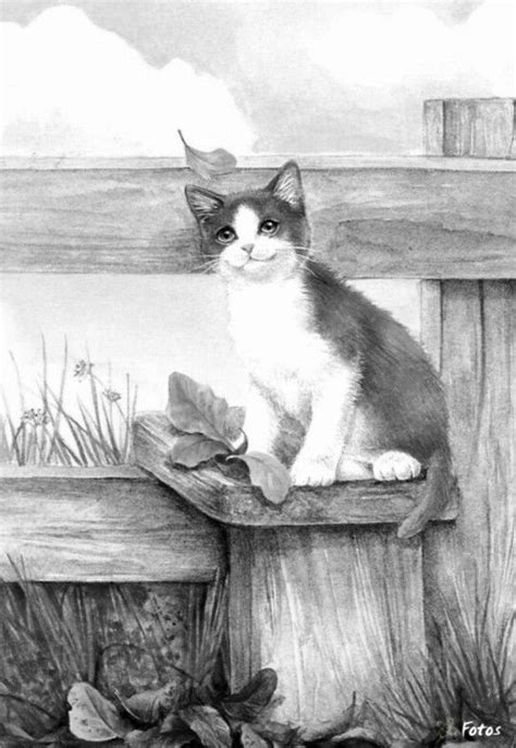 cat  dog drawings images  pinterest