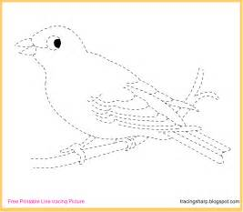Trace Image Online Free Tracing Line Printable Canary Tracing Picture