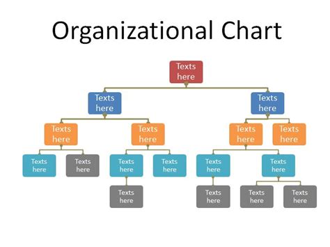 organizational chart free 40 free organizational chart templates word excel