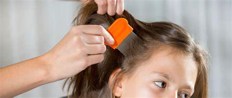 tread hair style for children tread hair style for children tread hair style for