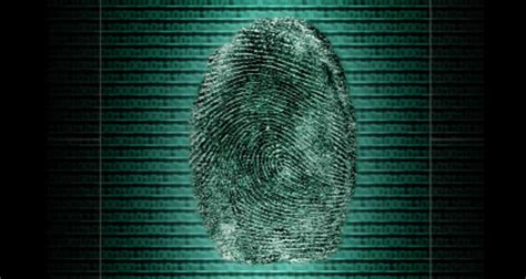 livescan background check livescan fingerprints for