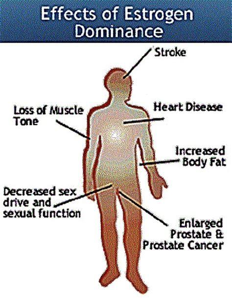 Estrogen Dominance Detox by Estrogen Detox And Detoxification Forest Foods