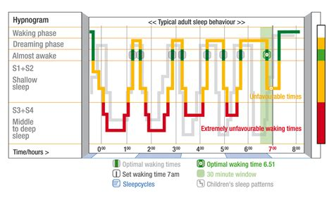 sleeping pattern synonym related keywords suggestions for normal sleep chart