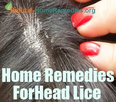 remedies for lice brown hairs