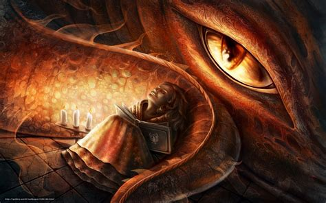 dragons and books wallpaper book free desktop