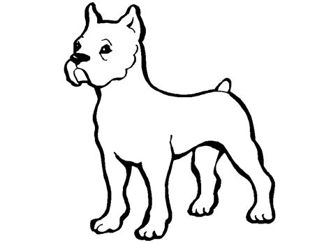 do dogs see in black and white black and white picture of a free clip free clip on clipart