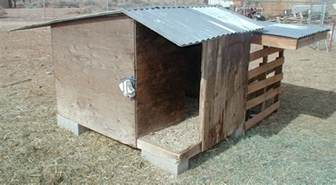 goat shed designs studio design gallery best design