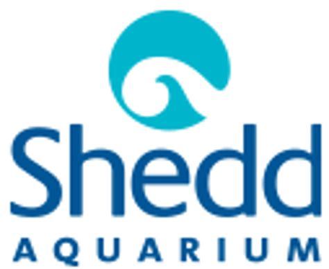 Shed Aquarium Coupons by Shedd Aquarium Coupon 2017 Find Shedd Aquarium Coupons