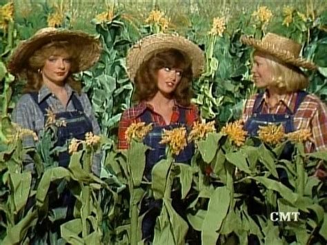 kathie lee gifford on hee haw honeys the hipster s lounge i have an ear worm