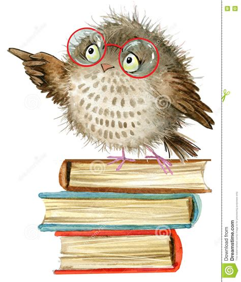 the days when birds come back books owl owl watercolor forest bird school books