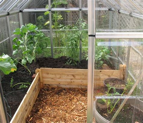 raised bed greenhouse raised beds in greenhouse greenhouse growing stuff