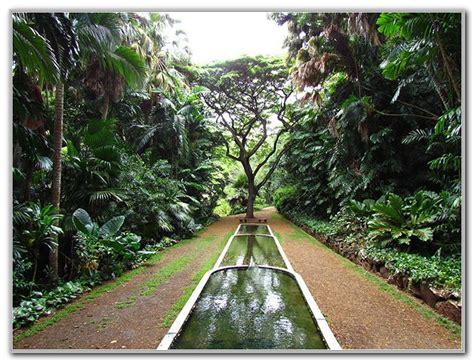 National Tropical Botanical Gardens Kauai National Tropical Botanical Gardens Kauai Garden Home Decorating Ideas Klxboog4w9