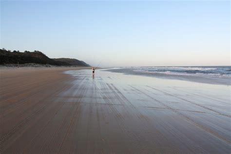 Bench Press For Cheap Fraser Island Great Sandy National Park Outbackjoe