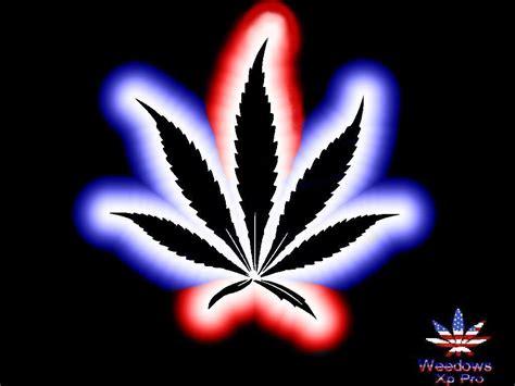 imagenes chidas que tengan movimiento im 225 genes de marihuanas chidas con movimiento