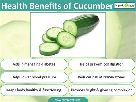 benefits of cucumber 5 wonderful benefits of cucumber organic facts