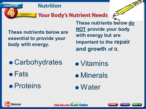 carbohydrates proteins fats and water are essential chapter 4 nutrition lesson 1 your s nutrient needs