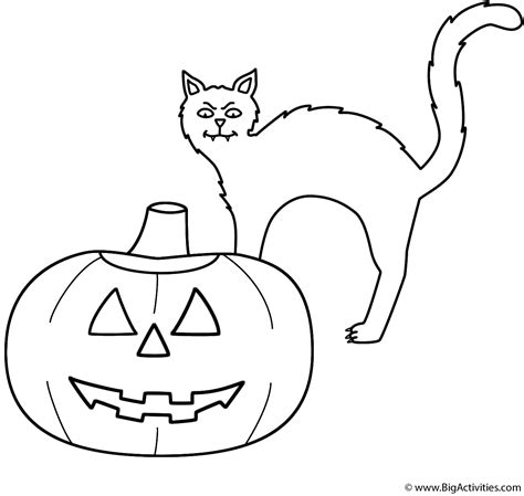 blank cat coloring page pumpkin jack o lantern with black cat coloring page