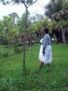 lost in my own backyard fierce ootd lost in my own backyard fierce