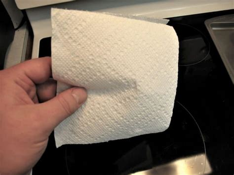 Toilet Paper Guide by Biodegradable Toilet Paper Product Reviews And Buying Guide