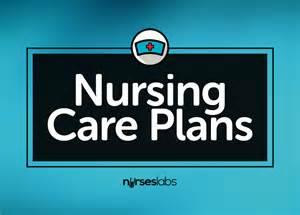 Home Business Ideas Nurses Best 25 Nursing Care Plan Ideas On Nursing