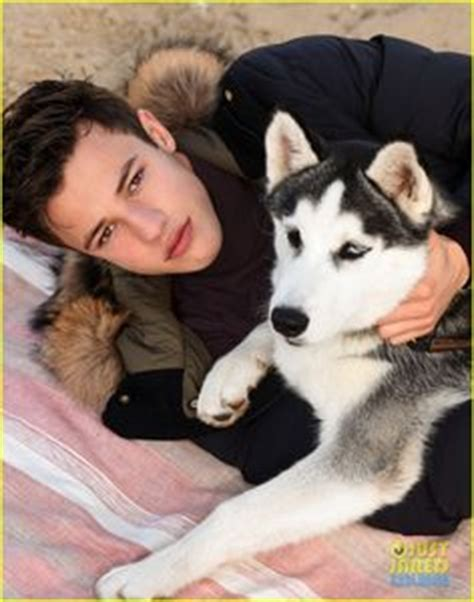 charlie puth quotev cameron dallas dog dog love pinterest dallas