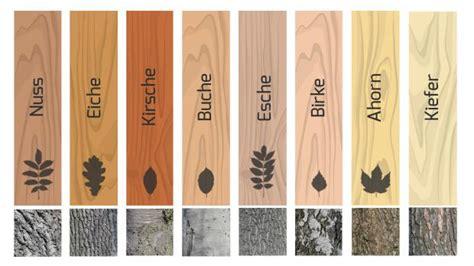 Welches Holz Passt Zu Kirschbaum by Parkett Holzarten Im 220 Berblick Ratgeber Diybook De